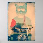 Coole Katze Poster