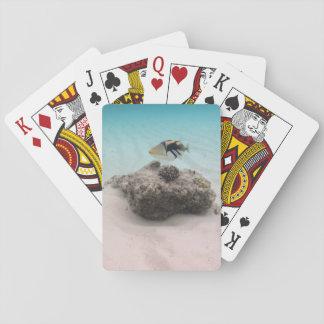 Coole korallenrote Fisch-weiße Sand-Lagune Spielkarten