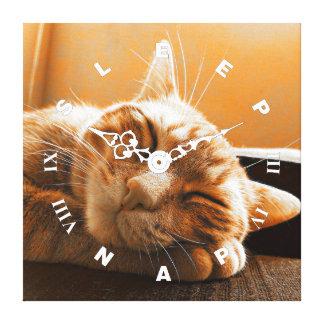 Coole lustige Katzen-schlafende und Nickerchen Leinwanddruck