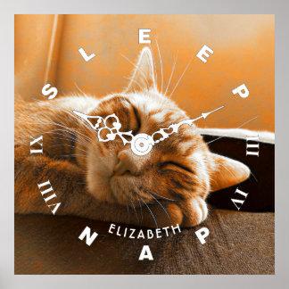 Coole lustige Katzen-schlafende und Nickerchen Poster