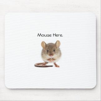 Coole Mausunterlage Mousepad