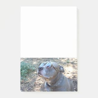 Coole Pitbull Anmerkungen Post-it Klebezettel