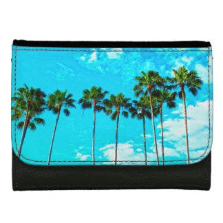 Cooler tropischer Palme-blauer Himmel