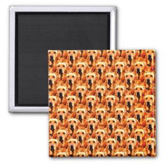 Cooles Hundekunst-Hündchen-goldener Retriever Quadratischer Magnet