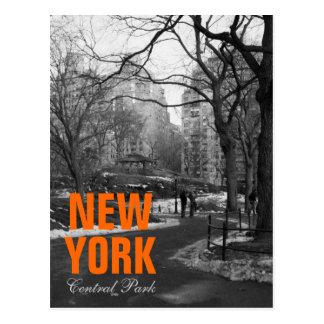 Cooles Schwarz-weißes NY Central Park Postkarte