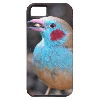 Cordon bleu-Fink Hülle Fürs iPhone 5