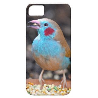 Cordon bleu-Fink Schutzhülle Fürs iPhone 5