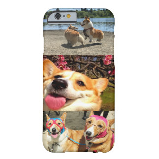 Corgi IPhone Fall Barely There iPhone 6 Hülle