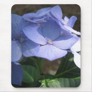 Cornflower-Blues Mousepad