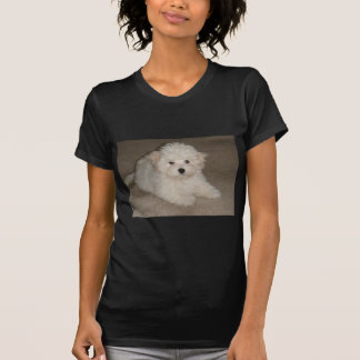 Coton_de_Tulear_puppy.png T-Shirt