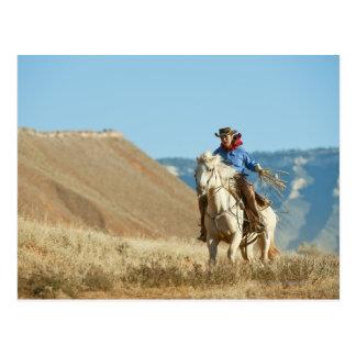 Cowboy 13 postkarte