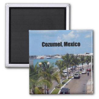 Cozumel, Mexiko Magnete
