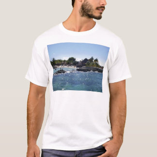 Cozumel, Mexiko T-Shirt