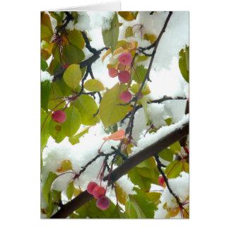 Crabapple: Schnee Karte