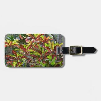 Croton Gepäckanhänger