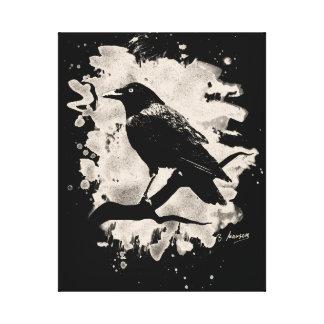 Crow bleached look gespannter galeriedruck