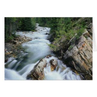 Crystal River, Gunnison staatlicher Wald, Karte