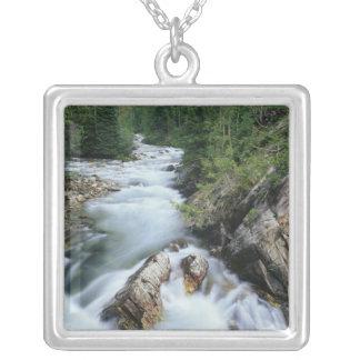 Crystal River, Gunnison staatlicher Wald, Versilberte Kette