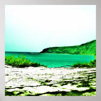 Culebra, Fotorezeptor-Plakat 321