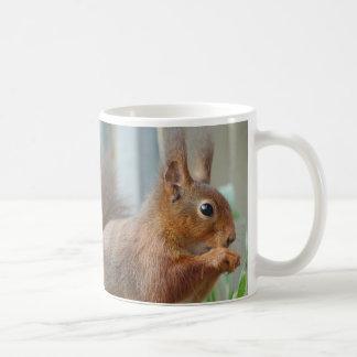 Cup SQUIRREL Eichhörnchen Écureuil von JL Glineur Kaffeetasse