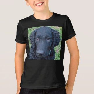 Curly_Coated_Retriever.png T-Shirts