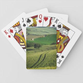 Curvy Linien in der grünen Toskana-Pokerplattform Spielkarten