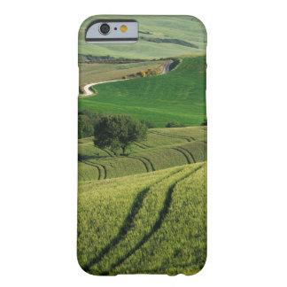 Curvy Linien in grünem Toskana iPhone Kasten Barely There iPhone 6 Hülle