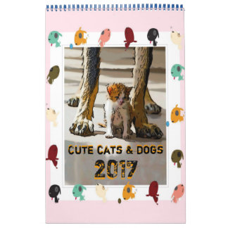 Cute cats and dogs abreißkalender