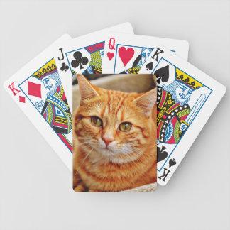 Cute Orange Cat Bicycle Spielkarten