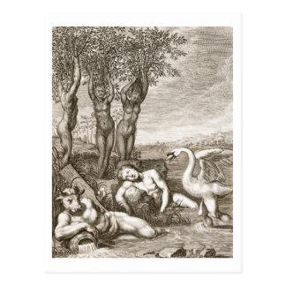 Cygnus umgewandelt in ein Schwan und des Phaetons Postkarte