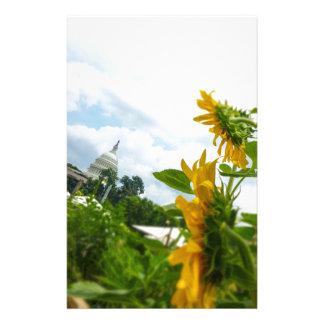 D.C. Sonnenblumen Briefpapier