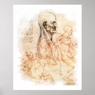 da Vinci - Mann und Pferd Poster