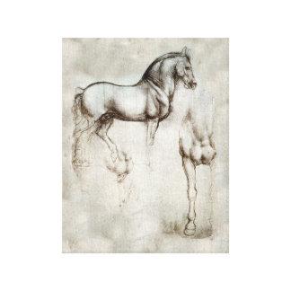 Da Vinci-Pferd Galerie Falt Leinwand