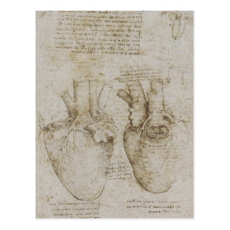 Da Vincis menschliche Herz-Anatomie-Skizzen Postkarte