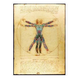 Da Vincis Vitruvian Mann mit Tätowierungen Postkarte