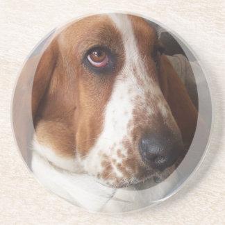 Dachshund-Jagdhund-HundeUntersetzer Untersetzer
