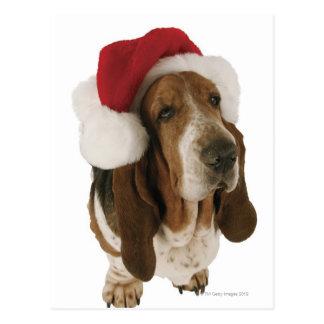 Dachshundjagdhund in der Weihnachtsmannmütze Postkarte