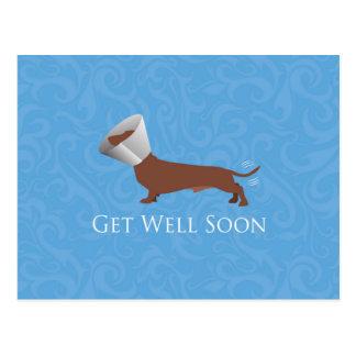 Dackel - erhalten Sie gut bald Postkarten