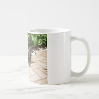 Dackel Kaffeetasse