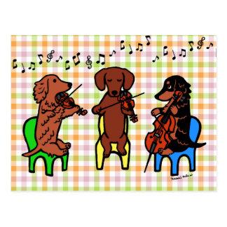 Dackel-Schnur-Trio Postkarte