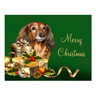 Dackel-Weihnachten Postkarten