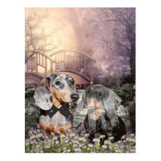 Dackelbraut und -bräutigam postkarte
