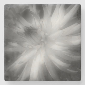 Dahlie-Blume in Schwarzweiss Steinuntersetzer
