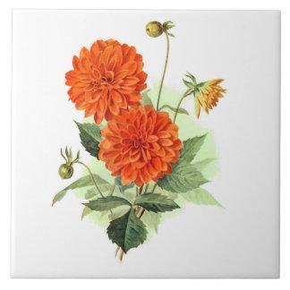 Dahlie-'orange Feuer King Große Quadratische Fliese