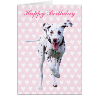 Dalmatinische alles Gute zum Geburtstagkarte des Grußkarte