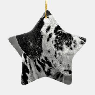 Dalmatinischer Schoßhund Keramik Ornament