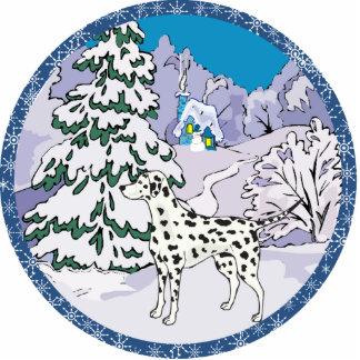dalmatinischer Winter Ausschnitt