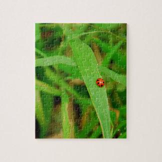 Dame Bug im Gras Puzzle