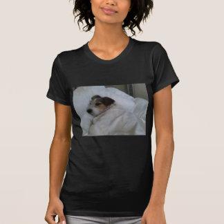 Damen-Petite T - Shirt