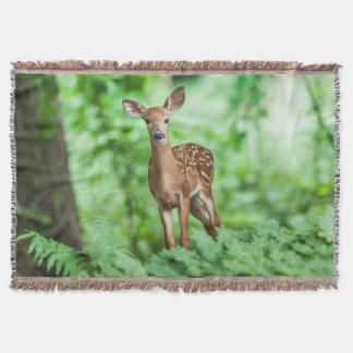Damhirschkuh in der WaldWurfs-Decke Decke